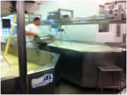 Making Cheese - Adding Rennent